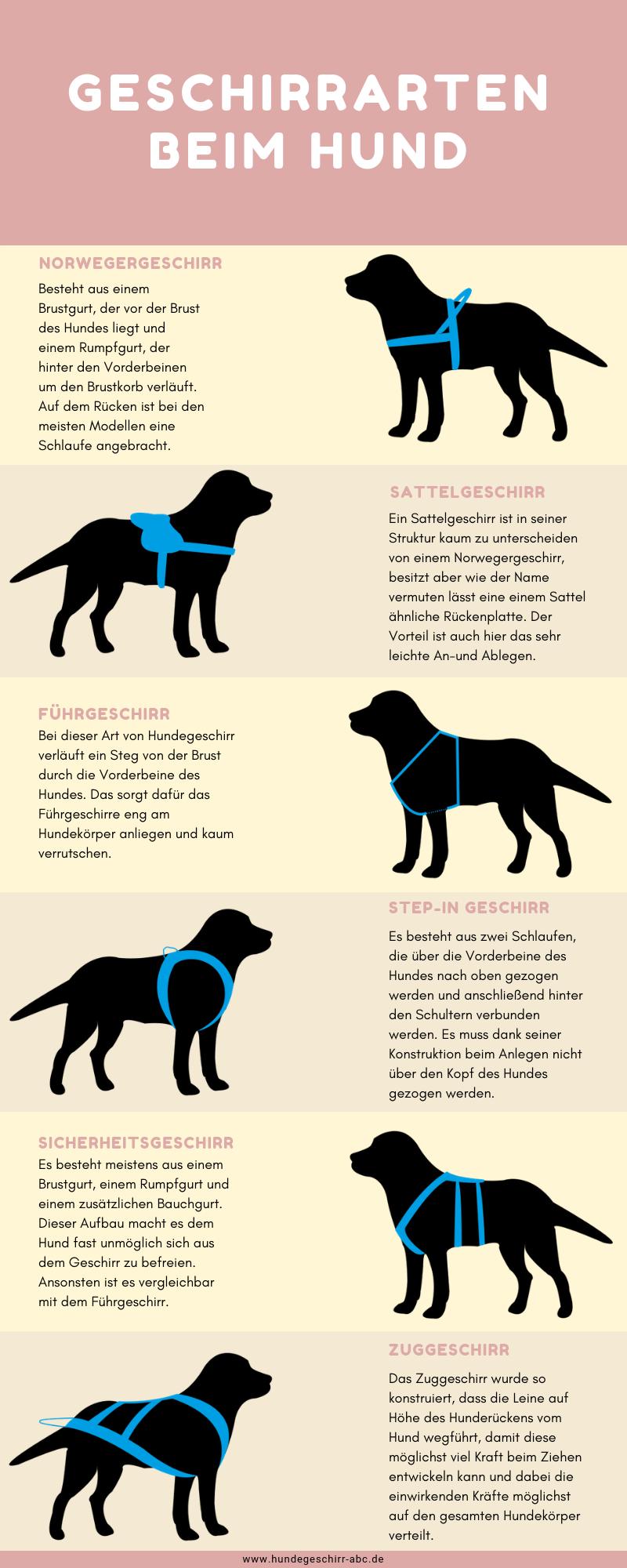 Infografik über Hundegeschirr Arten